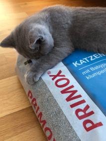 Primox Katzenstreu Babypuder
